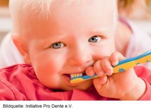 In der Regel brechen die Zähne in folgender Reihenfolge durch: 6 bis 8 Monate – untere Scheidezähne 8 bis 12 Monate – seitliche unteren und alle oberen Schneidezähne 12 bis 16 Monate – erster Backenzahn 16 bis 20 Monate – Eckzähne 20 bis 30 Monate – zweiter Milchbackenzahn